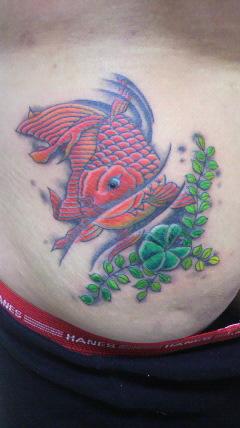 金魚と水草